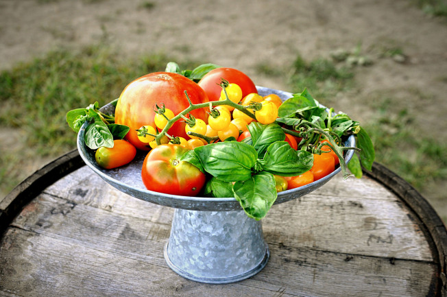 Tomato Centerpiece
